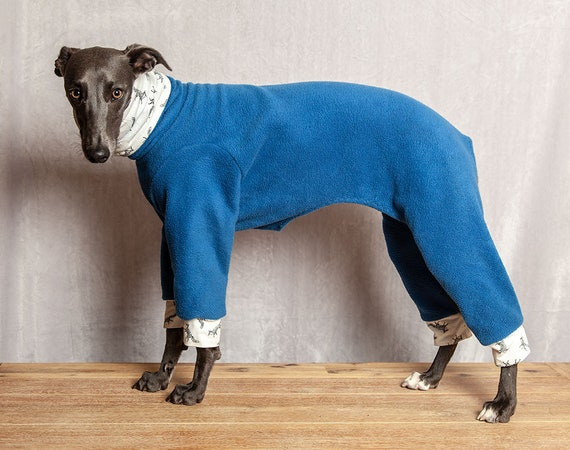 Warm Greyhound/Large Dog Fashion Onesie