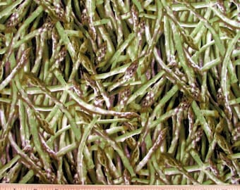 Realistic Vegetable Asparagus Fabric From RJR