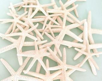 "White Natural Starfish - 12 Mixed Sizes 2""-5"" - Natural White Finger Starfish *Top Quality* craft shells beach weddings star fish"