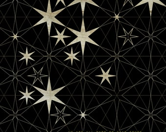 Carl Sagan Quote / We Are All Made Of Star Stuff - Art Print