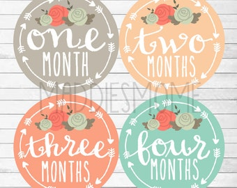 Baby Girl Monthly Stickers -INSTANT DOWNLOAD - DIY Printable pdf Milestone Growth Stickers Flowers Arrow Tribal (Solid Arrows Floral)
