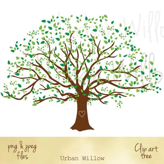 Große Stammbaum Grafik Stammbaum Bild Clipart Natur suchen
