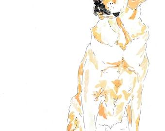 Labrador dog illustration