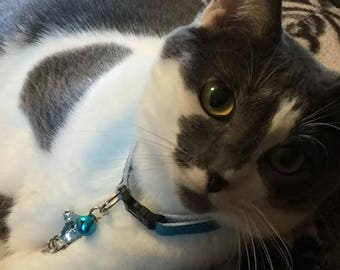 8 in-12 in Castiel's Grace Cat Collar Castiel Cat Cas Misha Collins Blue Glitter