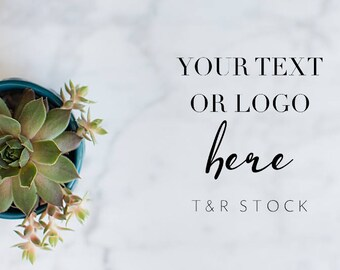 Flat Lay Stock Image, Flat Lay Desktop, Styled Desktop, Website Stock Photos, Flat Lay Succulents, Stock Pictures, Photo Stock, Image Stock