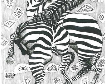 Zebra Fight, Africa, Wild Life, Safari