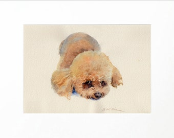 Poodle Mix watercolor painting, Giclee print