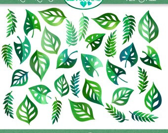 Tropical Leaves Clipart - 27 PNG Files - 1 Zip File - Instant Download