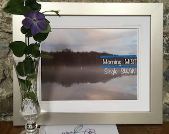 Swan Lake/Morning Mist Single Swan Photographic Wall Art Home Decor/Slogan Wall Art/Swan Wall Decor/Irish Lake Mist Wall Art/Ireland Gift