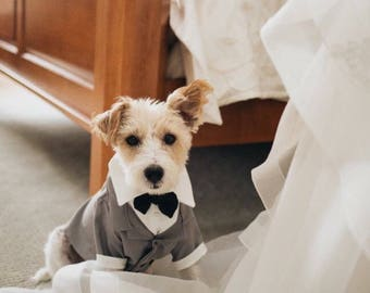 Dog Tux, Dog Clothes, Puppy Clothes, Dog Tuxedo, Puppy Tuxedo, Special Occasion Outfit, Dog Bowtie