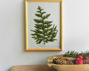 Green plant artwork - cedar art -  natural nursery decor -  minimalist plant art - forest decor gift
