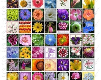 Flowers from Your Garden - Digital Collage Sheet - Inchies or 7-8 inch