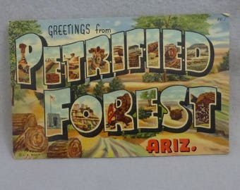 Vintage Mid Century Postcard Greetings from Petrified Forest Ariz.  Linen Finish