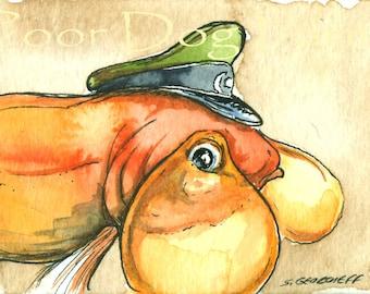 Captain Bubble Eyes..Goldfish -