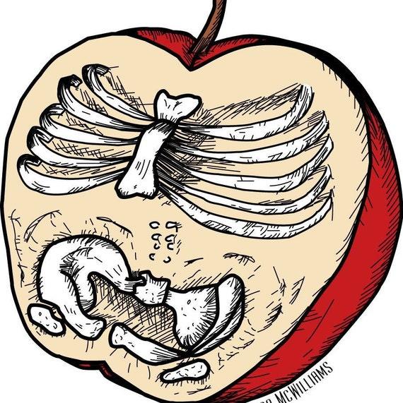 Anatomía de una manzana 3.5 x 4 o 8 x