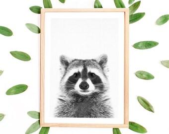 Raccoon Print, Black and White, Woodland Animal Print, Kids Room, Woodland Nursery Animals, Printable, Modern Minimalist, Raccoon Poster