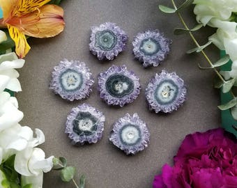 "Small Amethyst Stalactite Slice > Natural Amethyst and Agate Crystal Slice from Uruguay > Purple, Green, White Crystal - 1-1.25"" diameter"