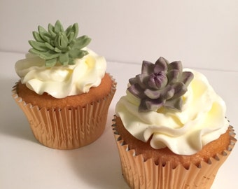Cupcake toppers - Gum paste succulents - Set of 12