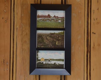 New York State Farming Postcard Trio