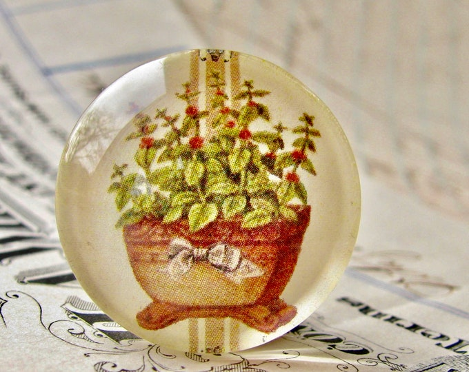 Flowering Oregano, herbs from our Vintage Kitchen collection of handmade glass oval cabochons, 25mm circle, food, cooking, bottle cap 1 inch