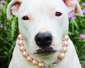 Jumbo Chunky Soft Pink Pearl Dog Collar,Cat collar, Buckle Collars, Martingale Collars, Dog Pearls UNBREAKABLE GUARANTEE!