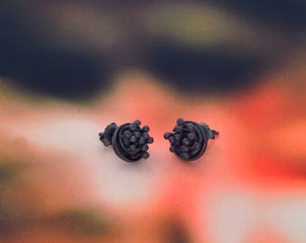 Botánica black earrings