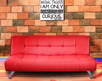 Passionately Curious Quote by Einstein, Vinyl Wall Hanging, Canvas Wall Sign
