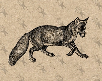 Vintage image Red Fox Instant Download Digital printable retro picture clipart graphic for collage art print fabric transfer burlap HQ300dpi