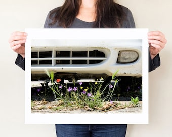 Urban nature photo, Greek wildflowers and old car photography print. Authentic home decor, Fiskardo, Kefalonia. Mediterranean plants artwork