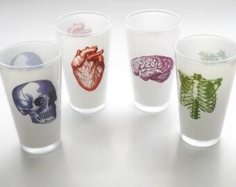 Beer Pint Glasses novelty gift Father's Day medical anatomy hospital anatomical heart skull halloween creepy skeleton decor goth neurology