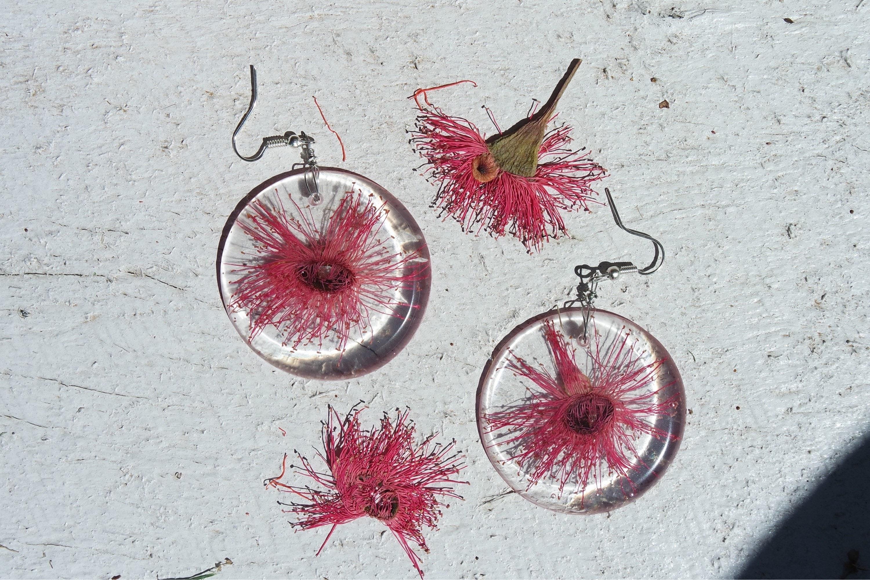 Pink flowering gum earrings mightylinksfo