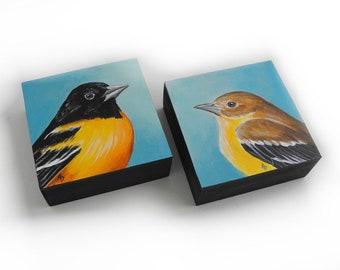 Oriole pair of birds - songbird wedding couple - birdwatching gift - love bird art - orange bird - backyard songbirds - baltimore oriole art