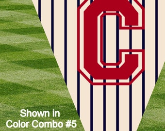 Concessions Banner (Choose your color combo)
