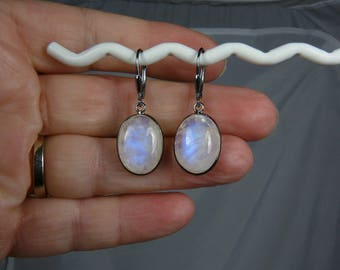 Rainbow Moonstone and Silver Earrings, Rainbow Moonstone Cabochons, Glowing Sky Blue Fire, Oxidized Sterling Silver Bezels and Leverbacks