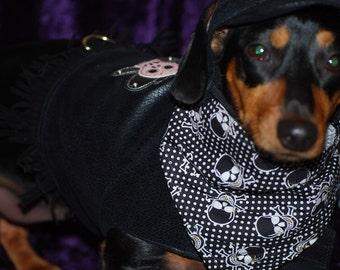 Cute little Biker outfit 3 piece harness vest custom sizes