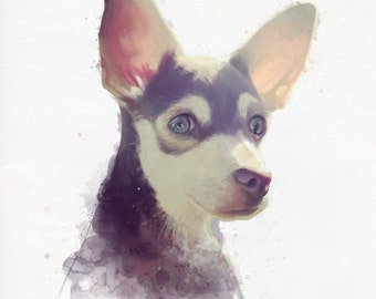 Pet portrait - Made to order
