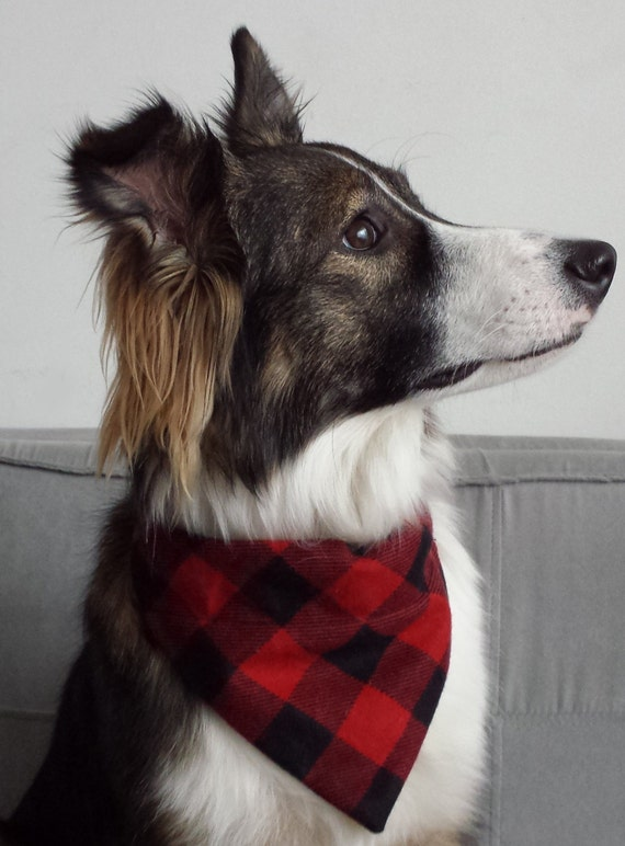 Red Amp Black Buffalo Plaid Check Over The Collar Dog Flannel