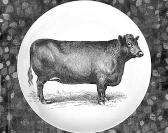 black cow plate