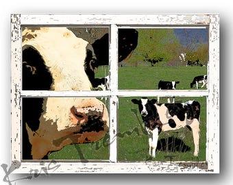 Cows Cow art print  holsteins! print of  cows at window by Kris Trembley