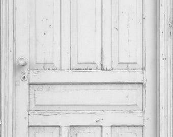 Rustic White Doors Photography Backdrop, Weathered Painted Doors vinyl photodrops, Children Newborns photography background D-8154