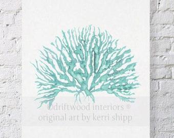Sea Coral in Woodlawn IV Print 11x14