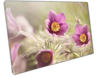 Summer flowers Ready to Hang Canvas XIC125