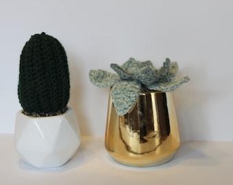 crochet cactus plant