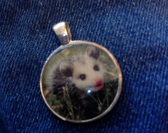 Cute baby opossum picture for pendant or charm