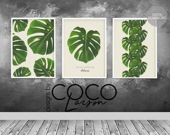 Monstera leaf, monstera print, monstera deliciosa, botanical leaf print, green tropical leaf, botanical leaf, tropical leaf print, set of 3