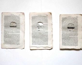 Triptych - The heroes' return -  les aventures de Télémaque.