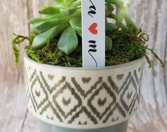 Monogram Succulent Stake, Succulent Stake, Wedding Favor Plant Tag, Flag Tag, Plant Stake, Wedding Favor, Baby Shower, Plant (S10)
