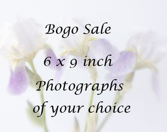 6 x 9 inch Photographs of Your Choice, Bogo Sale