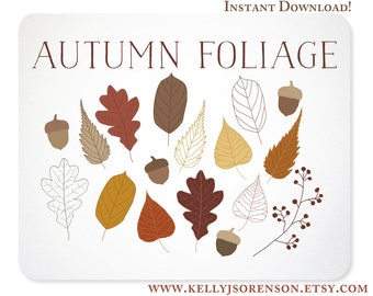 Hand Drawn Autumn Leaves, Foliage, and Acorn Design Elements / Blog Graphics - Instant Download