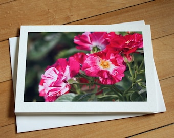 Roses Greeting Card, Blank Greeting Card, Note Card, Any Occasion, Birthday Card, Envelope, Photography, Photograph, Floral, Flowers, Girl